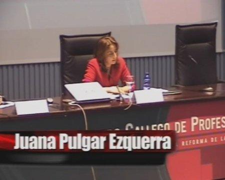 Juana Pulgar Ezquerra, Catedrático de Dereito Mercantil. Universidade Complutense de Madrid - IV Encontro Galego de Profesionais do dereito concursal
